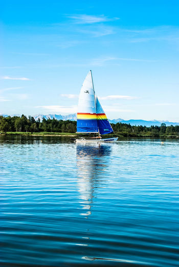 Bayern Germany Bavaria Ufer Boats Boote Breathe Nature Natur Wasser Seaside Freedom Freiheit The Essence Of Summer König Der Welt Forrest Segeln Segelboot Sailing Sailboat Sail Away, Sail Away Boat Ride Boats And Water Color Of Life The Great Outdoors - 2017 EyeEm Awards