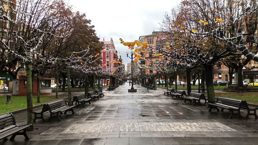 Outdoors Day No People City Sky Tree Wet Park Tree Gijon_asturias