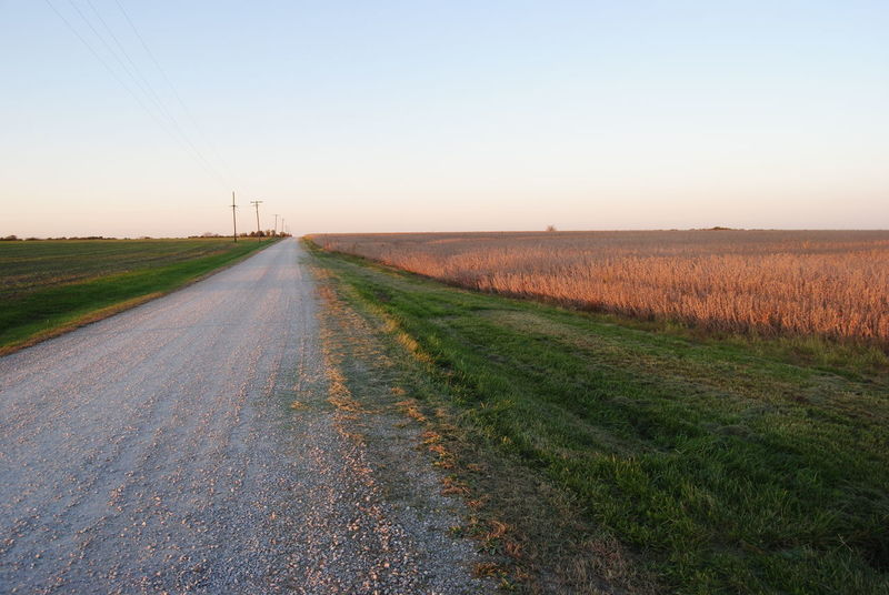 Agriculture Beauty In Nature Country Road Countryside Day Diminishing Perspective Dirt Road Empty Road Field Grass Horizon Over Land Landscape Long Nature No People Outdoors Prarie Road Rural Scene Scenics Sky The Way Forward Tranquil Scene Tranquility Vanishing Point