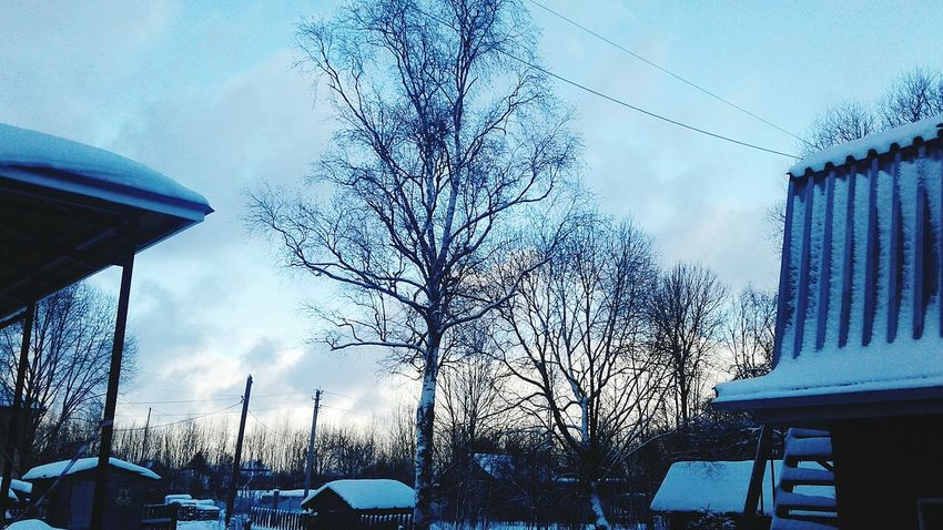 Tree Sky Outdoors Nopeople Winter Willage Sky Low Angle View Built Structure Outdoors Cloud - Sky Building Exterior Architecture