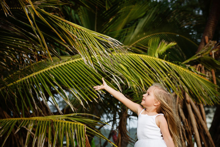 Girl standing against palm tree