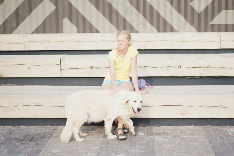Young Woman Sitting With Labrador Retriever On Wooden Bench During Sunny Day