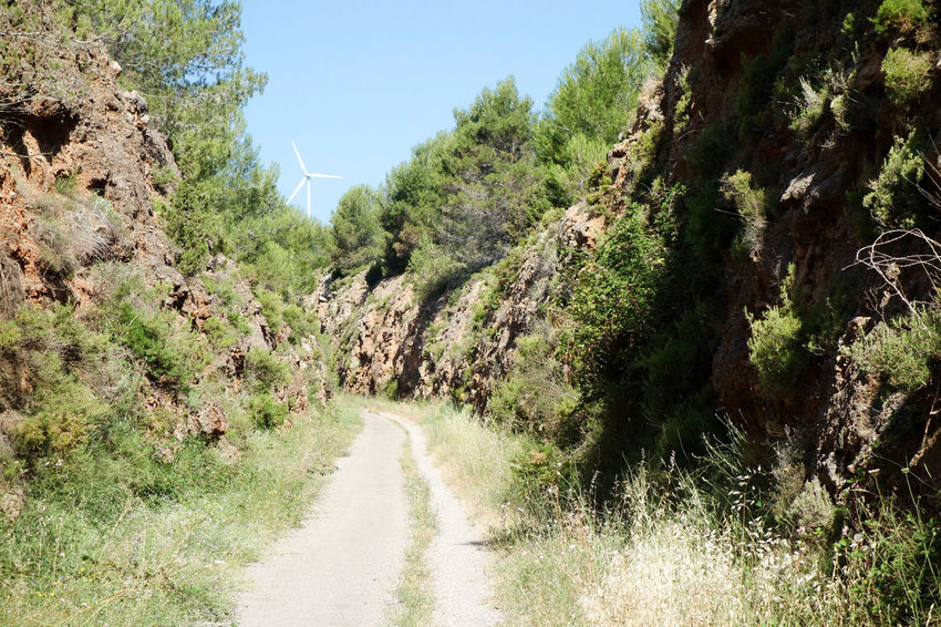 Beauty In Nature Bike Castellón Clear Sky Cycling Day Green Green Way Growth Landscape Mountain Nature Nature No People Outdoors Plant Road Scenics SPAIN The Way Forward Tranquil Scene Tranquility Tree València Vegetation