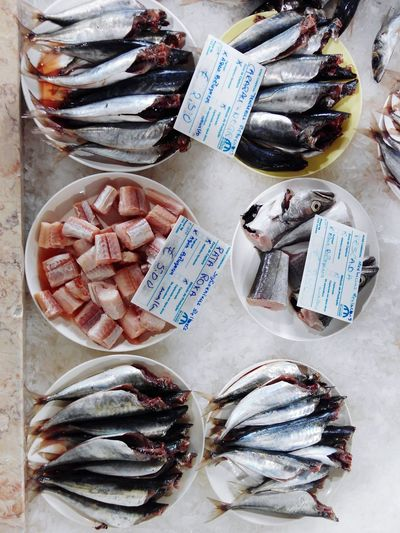 Fish Fishing Fish Market Fish-eye Lens Fishes Fishing Village Fisheye FishEyeEm FishMarket Fish Eye Fishing Time Freshness Fresh Fish Market Fresh Fish From The Dock Fisch Fische Fischerei Poisson 🐟 Poissons Pescado Pescados Mariscos Marisco Mariscos Frescos Peixe peixes