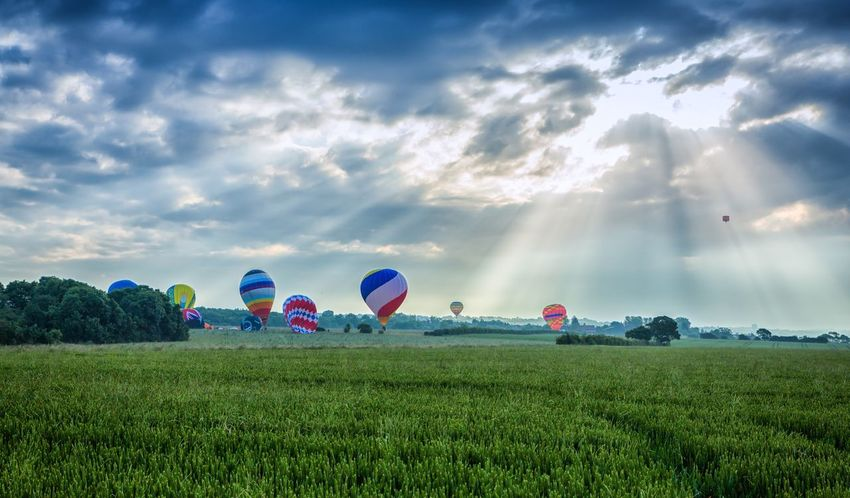 Hot air balloons landing Appeal Charity Lord Mator's Regatta Hot Air Balloons London 2016