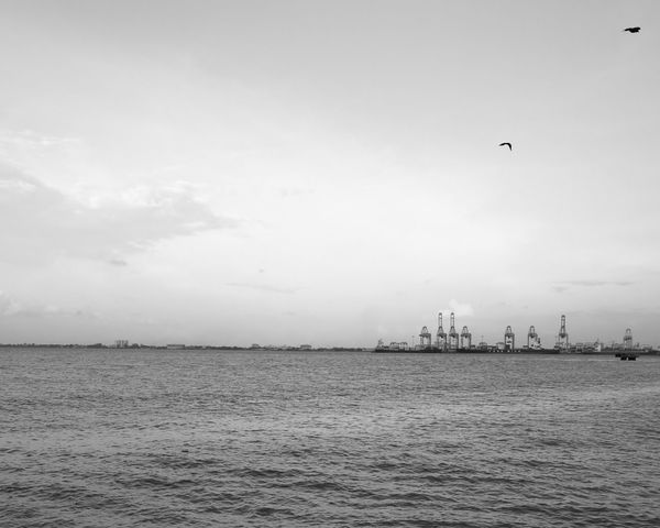 Penang Port Water Sea Waterfront Rippled Horizon Over Water Seascape Nature Beauty In Nature Calm Outdoors Ocean Scenics Leica Dual Camera Composition Huawei P9 Leica Huaweiphotography Huawei Leica HuaweiP9plus EyeEm Leica Photooftheday Monochromatic Huaweip9monochrome MonochromeBlackandwhite