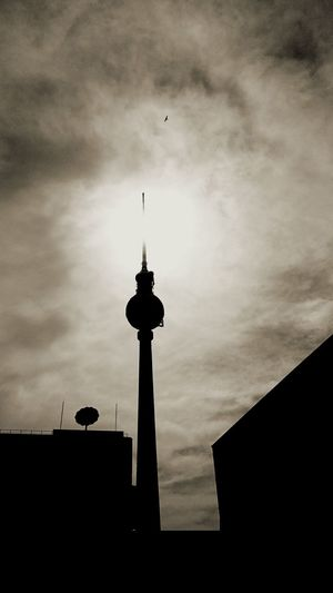 Berlin City Cityscapes Cityscape City View  Sightseeing Fernsehturm Berliner Ansichten Berliner Fernsehturm Blackandwhite