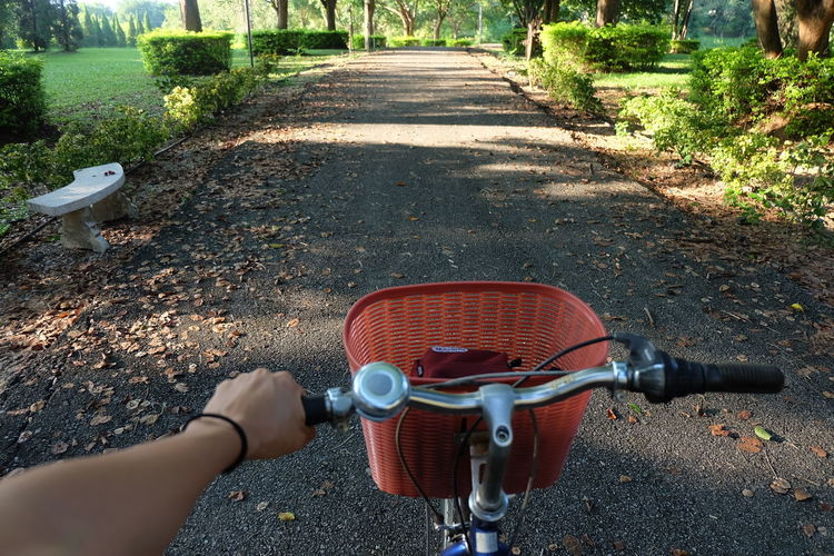 Transportation One Person Handlebar Bicycle Human Body Part Day Road Human Hand Nature Hand Real People Personal Perspective Plant Outdoors City High Angle View Lifestyles Body Part Mode Of Transportation Riding
