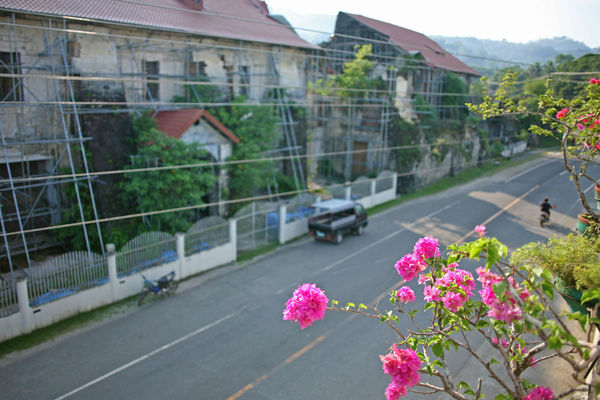 Evening street scene in the town of Loboc Bohol Earthquake Damage Repair Architecture Building Exterior Built Structure Close-up Day Flower Focus On Foreground Fragility Growth House Loboc Nature No People Outdoors Pink Color Pink Flower Road Sky Transportation