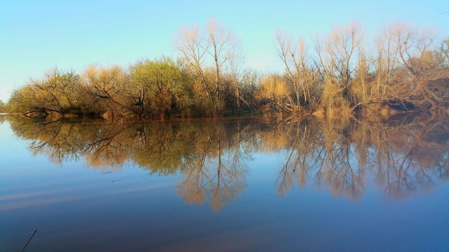 Winter Meets Spring Water Reflections Water River Riverbank Sunday Afternoon Pastel Power Mobile Photography Here Belongs To Me Miles Away