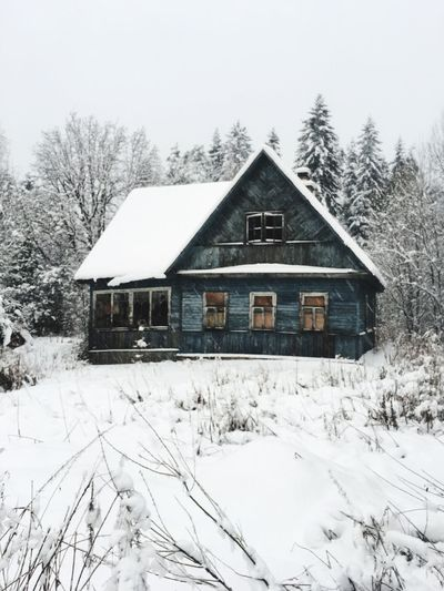 The Datcha Snow Cold Temperature Winter Architecture Building Exterior Built Structure White Color Tree House Nature No People Plant Sky Cottage