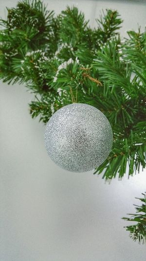 Christmas Decorations Silver Balls Christmas Tree Christmastime Hollidays Showcase: December Check This Out Taking Photos EyeEm Gallery Eyemphotography