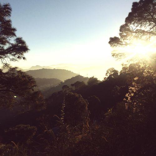 Earlier Today Foggy Landscape