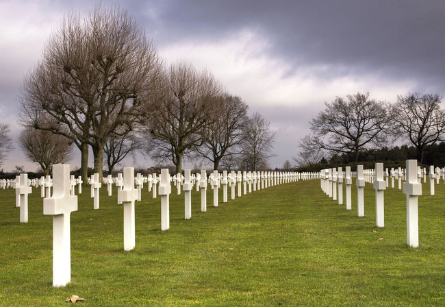 American war cemetery near Margraten in the Dutch province Limburg Bare Tree Cemetery Cross Day Grass Grave Gravestone Graveyard Honor In A Row Memorial Military Nature No People Outdoors Patriotism Sky Tombstone Tree War