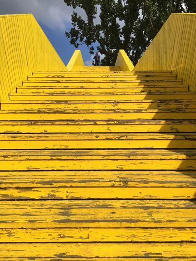 Dutch Cities EyeEmNewHere Rotterdam The Netherlands TheWeekOnEyeEM Steps To The Sky Surprising Rotterdam Yellow Steps
