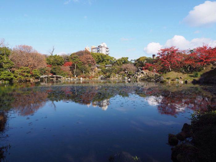 Kyoto Japan Sho-seien Higashihonganji Ingetsu-chi Shinsetsu-kyo Garyu-do Pond Reflection Olympus PEN-F 京都 日本 渉成園 東本願寺 印月池 侵雪橋 臥龍堂 池 秋