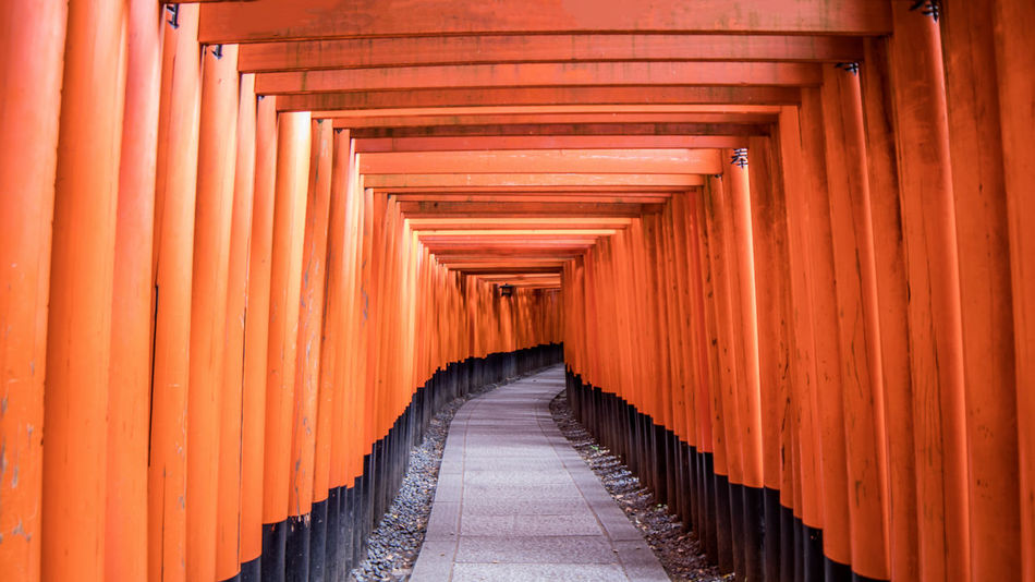 Architectural Column Architecture Built Structure Color Palette Color Palette Colour Of Life Culture Diminishing Perspective Fushimi Inari Shrine In A Row Japan Orange Color Repetition Shrine Shrine Of Japan Temple Temple - Building The Way Forward Vanishing Point Finding New Frontiers