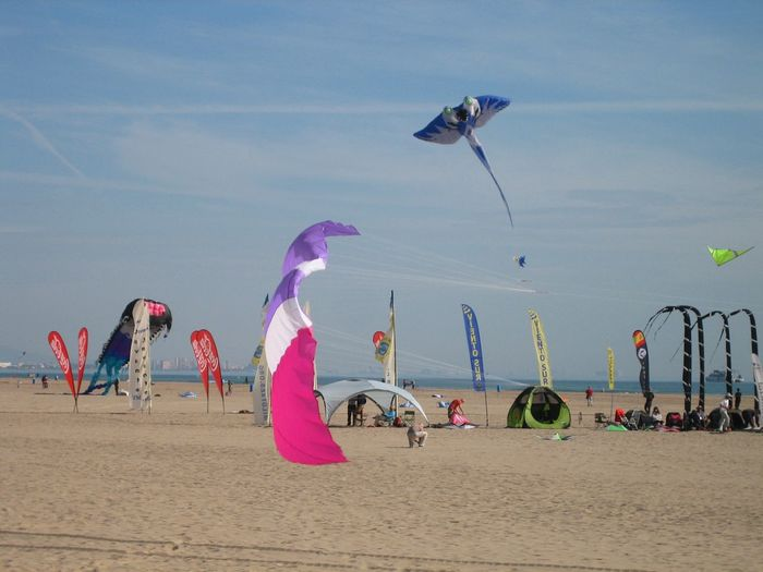 Multi colored kites flying at beach against sky