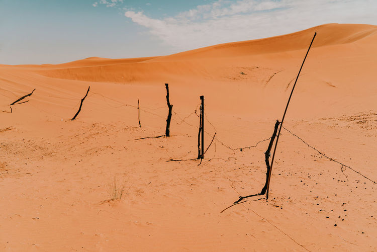 Scenic view of sand dunes in desert against sky