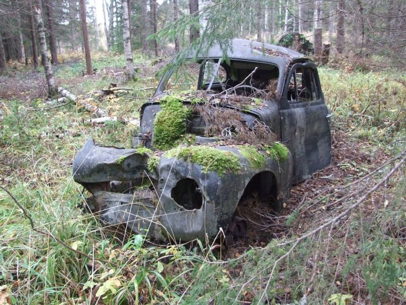 Car Volvo Pv Forest Veteranbil