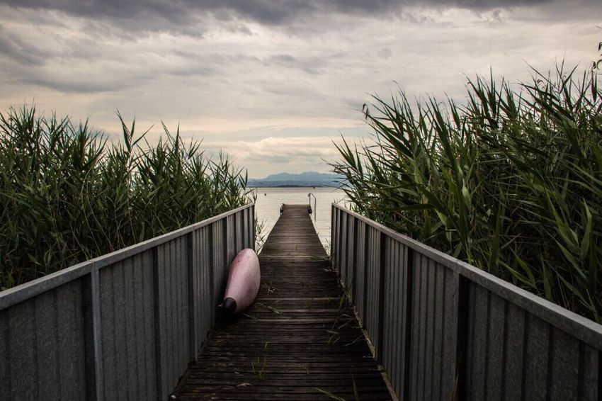 Sea Nature Railing Tranquility Outdoors Water The Way Forward Beauty In Nature Horizon Over Water Wood Paneling No People Grass Lago Lagodigarda