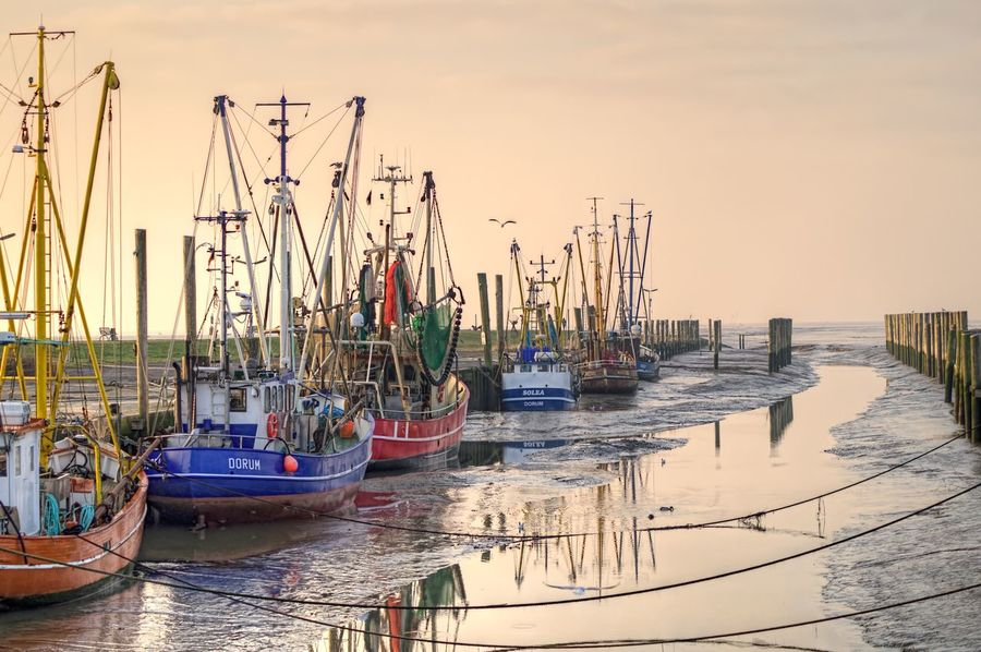 Dorum Fishingboat Fischerboot Reflection Reflections Nordsee Northsea Wattenmeer Ebbe Low Tide Lowtide  Lowtidephotography 43 Golden Moments