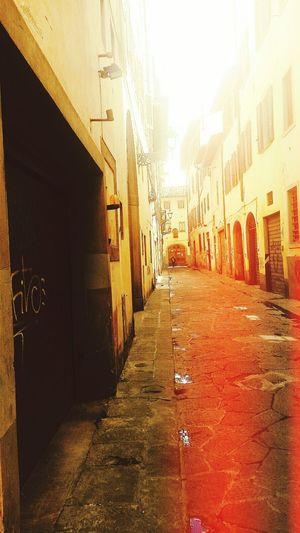 Florence Underground Alley Dailytrip Stillalive