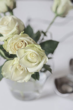 Arrangement Beauty In Nature Bouquet Bouquet Of Flowers Close-up Flower Flower Arrangement Flower Head Flowering Plant Fragility Freshness Full Frame Indoors  Inflorescence Nature No People Petal Plant Rosé Rose - Flower Roses Selective Focus Vulnerability  White Color White Flowers