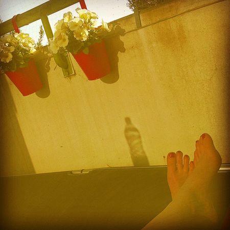 Heated Sunnyday Summer Summertime