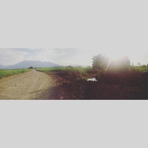 Hay cosas que se disfrutan por la pasión que se le tiene... Zona8 Agronomia 🌱👌😎