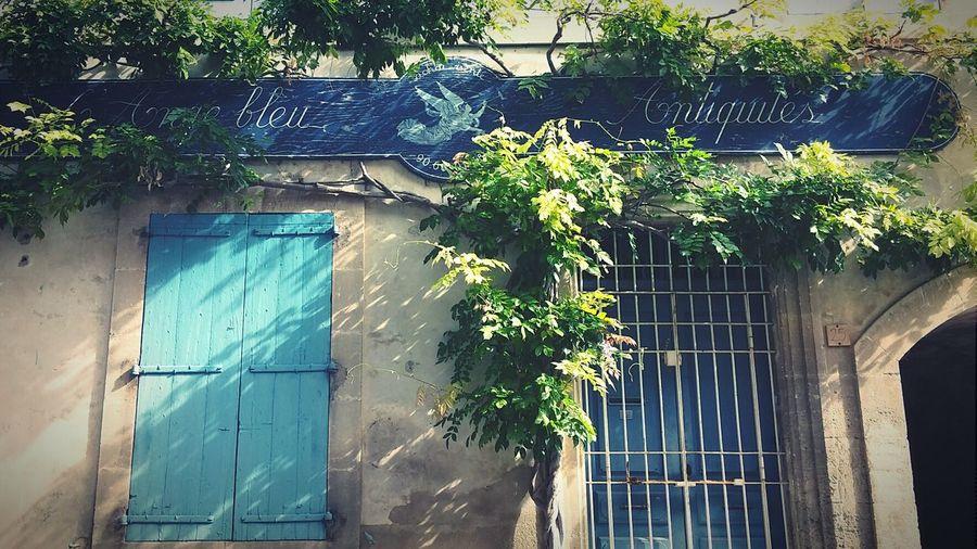 Erasmus Photo Diary day 51: Lourmarin Luberon Provence 3