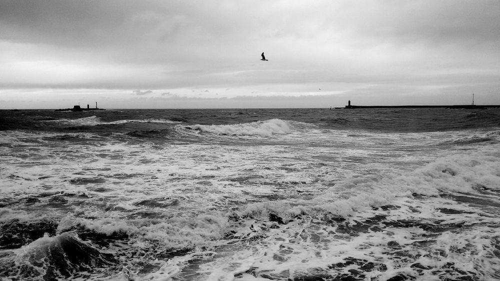 Sea And Sky B&w atLeghorn/ Livorno Italy