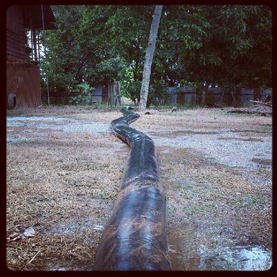 ทางน้ำไหล