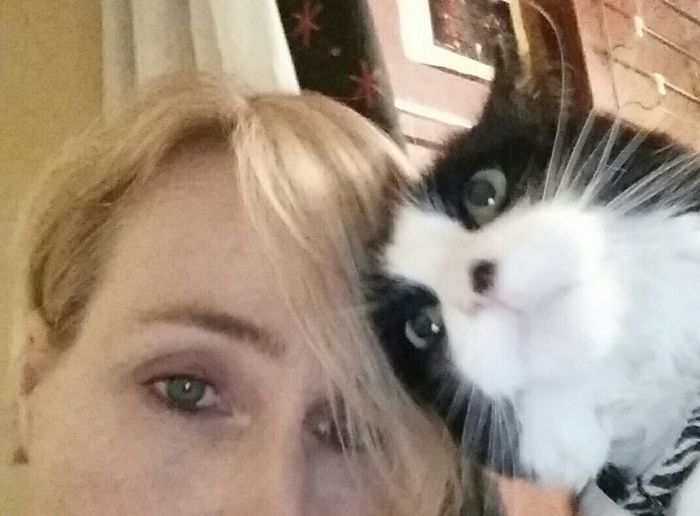 And i love him...The Purist (no Edit, No Filter) Selfie Kittyselfie Kittylove Check This Out Enjoying Life Catoftheday Fancypants EyeEm Cats Purrfect