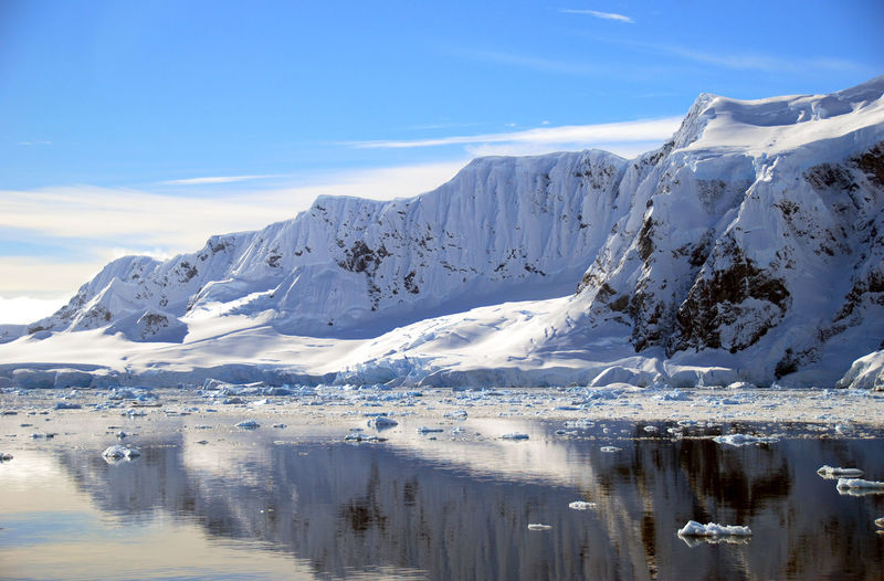 Antarctic landscape with calm ocean Antarctica Ice Nature Reflection Arctic Glacier Iceberg Landscape Nature Ocean Polar Climate Sea Snow Water