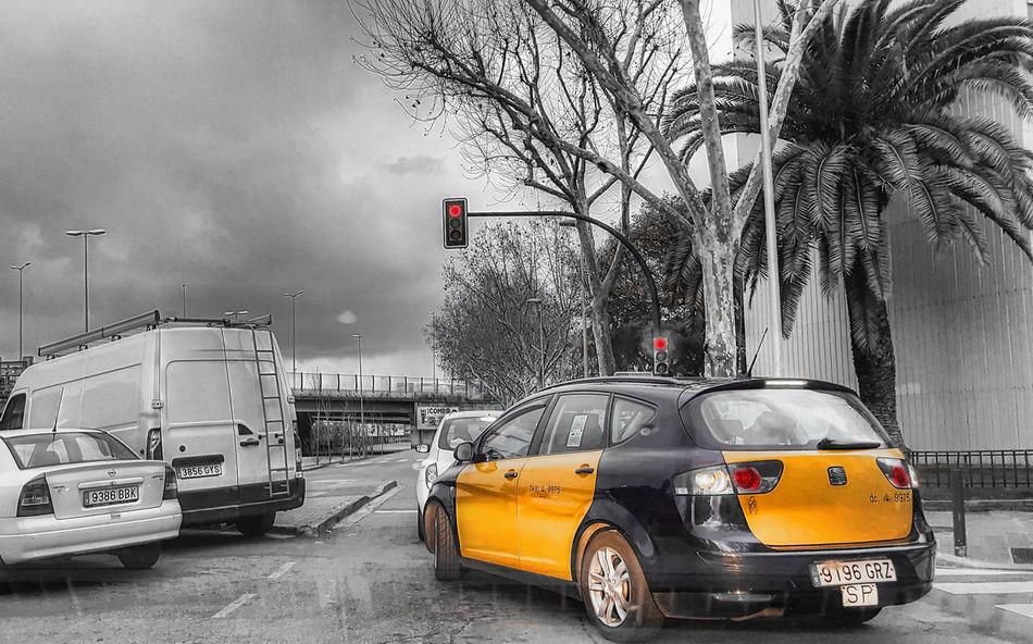 Barcelona Car Catalunya City City Street Hospitalet De Llobregat Mode Of Transport Road Street Taxi Traffic Transportation Travel Vehicle