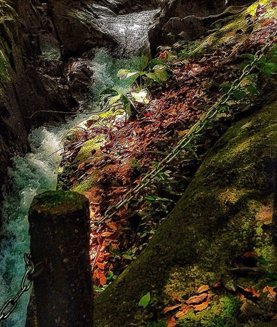 For I Grew Up The Mountains Morning Light Rainbow Colors Creekside Trail Flowing Waterfall Motion Blur Japan Photography InKaratsu