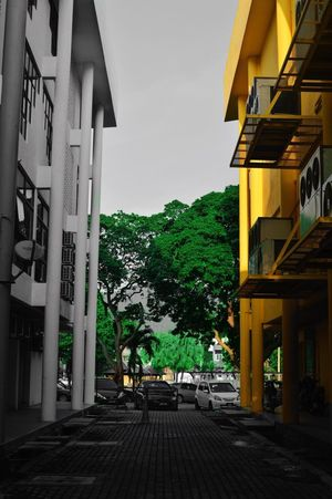 Paint The Town Yellow Yellow Photoshoot Photography Built Structure Outdoors Streetphotography Coloursplash The World