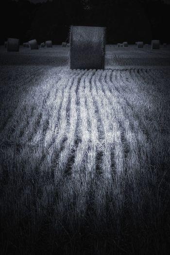 Hay bales on field at night