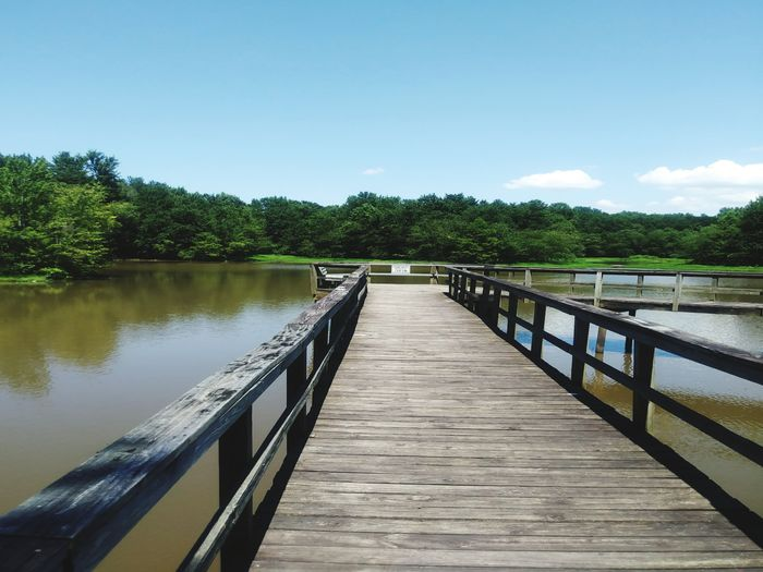 Quiet time- explains itself this view over the walk way was meditating. Railing Pier Water Outdoors Lake Day No People Footbridge Sky Nature Tree Beauty In Nature