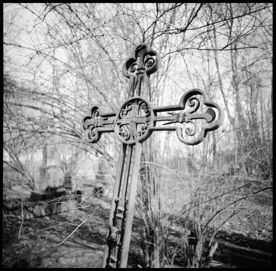 The cemetery of artist in Saint Petersburg Abandoned Cemetery Analogue Photography Black And White Cemetery Cemetery Forest Cross Cross Cemetery Death Faith Grave Grave And Leaves Grave In Forest Graveyard Lomography Medium Format Old Cemetery Old Graves Orthodox Outdoors Religion Russia Saint Petersburg St.petersburg