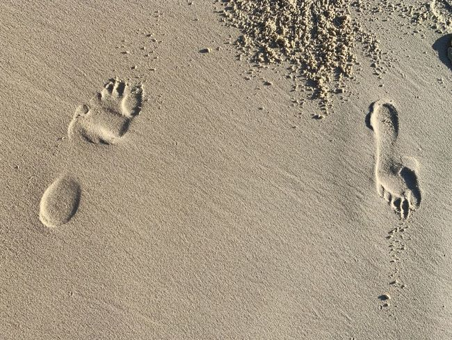 Which way Beach Sand Explore Path Leaveyourmark Choice Footsteps In The Sand Footstep Choices Impression Footsteps Path No People Print Track - Imprint Close-up Mystery Animal Track