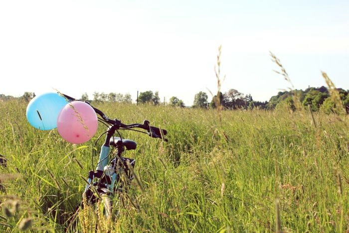 Transportation Day No People Bicycle Grass Nature Outdoors Sky Pink Türkis Blue Beauty In Nature Balloons Nature Grass Botany