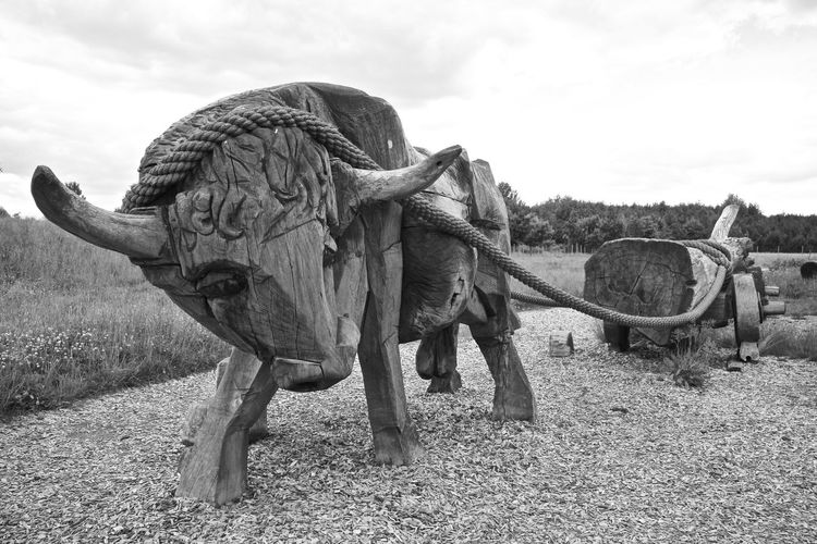 Raddusch Slawenburg Raddusch Animal Themes Black And White Friday Day Field Mammal Nature No People Outdoors Sculpture Sky Spreewald