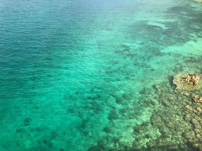 Green Color Colors Gradation Sea Water High Angle View Turquoise Colored Transparent Day No People Nature Blue Beauty In Nature Outdoors