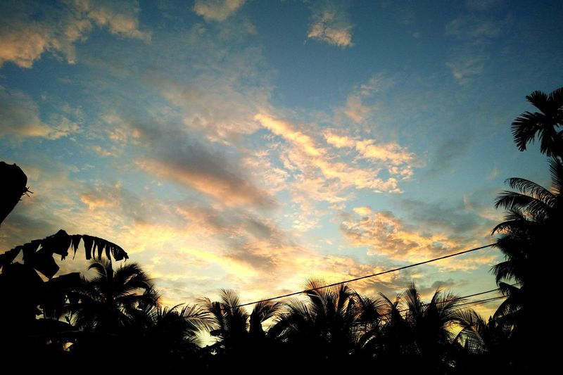 43 Golden Moments Sunrise Morning Light Morning Sky Nature Is Art Naturelovers Natural Beauty Nature_collection Sky And Clouds Sky_collection Sky
