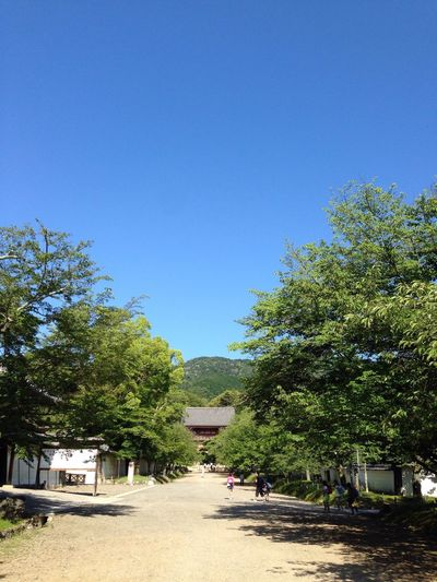 Kyoto Cloud And Sky Blue Green