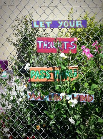 No People Chainlink Fence Green Color Outdoors Text Day Growth Plants Flowers Inspirational
