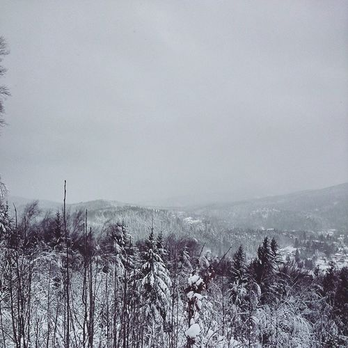 Jonsberg mit Blick auf Jonsdorf
