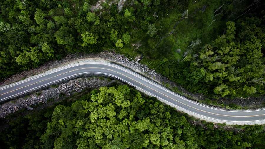 High angle view of country road amidst trees in forest